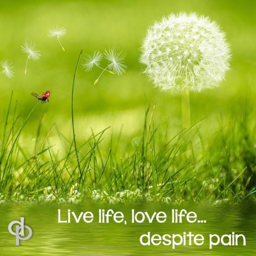 Despite Pain, Live Life, Love Life.