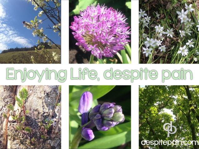 Enjoying life despite pain. Nature, clouds, flowers, trees