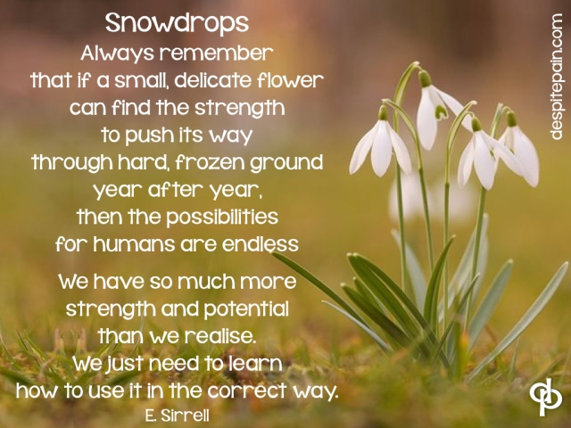 Snowdrops poem, small delicate flower, strength, potential, chronic illness, pain.