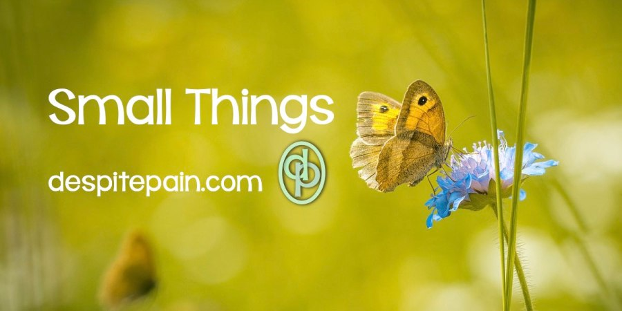 Small things matter. Small things are big things when you live with chronic pain