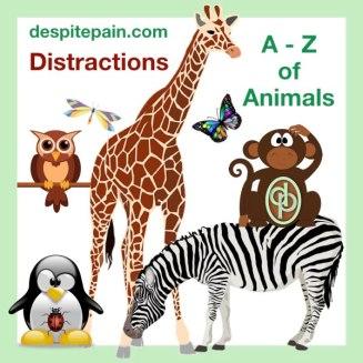 Distraction ideas. A - Z of Animals. In pic - Butterfly, dragonfly, giraffe, ladybird, monkey, owl, penguin, zebra.