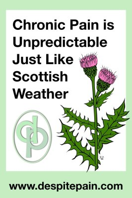 Chronic pain is unpredictable just like Scottish Weather. Thistle in picture.