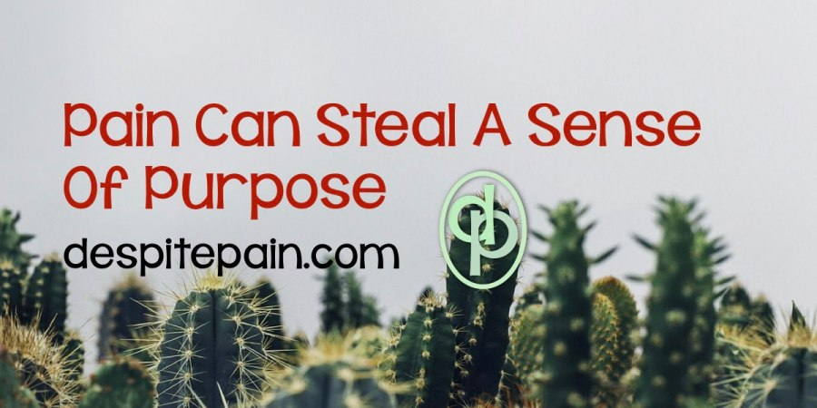 Pain can steal a sense of purpose. Cactus plants